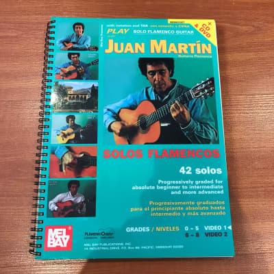 Mel Bay's Play Solo Flamenco Guitar with Juan MartinMusic Book