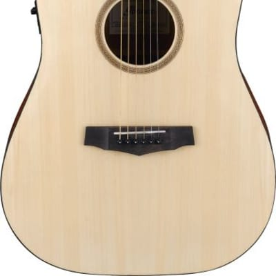 Ibanez Pf10 Ce Opn   Open Pore Natural for sale