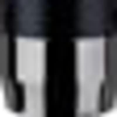 CR21: Pair of Small Diaphragm Microphones (Black Chrome)