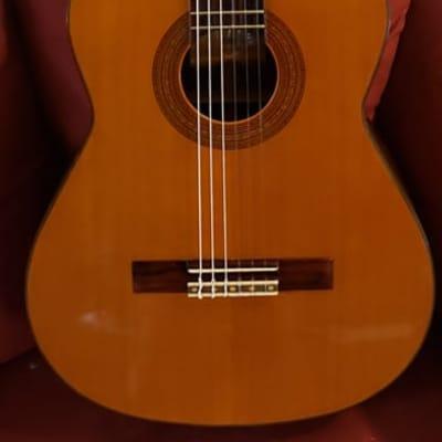 Conn C-200 Classical Acoustic Guitar 1971 Japan for sale