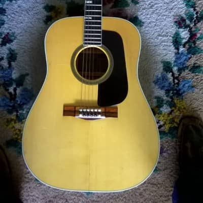Goya GG174 Acoustic Guitar for sale