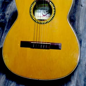 Giannini  8141 Model # 4 Classical 1965 for sale