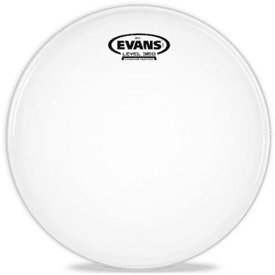 """Evans B20G14 G14 Coated Drum Head - 20"""""""