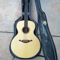 <p>Cort NTL 20 Natural Spruce &amp; Mahogany</p>  for sale