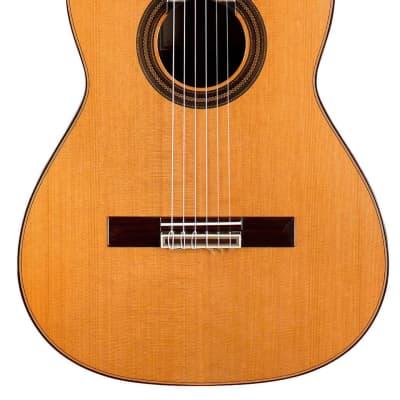 Teodoro Perez Estudio C-650 2021 Classical Guitar Cedar/Indian Rosewood for sale