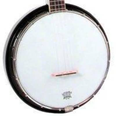 Flinthill FHB55 16 Bracket Banjo with 5th Peg and 11