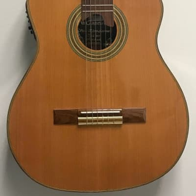 Giannini GWNFLE X Classical Guitar for sale