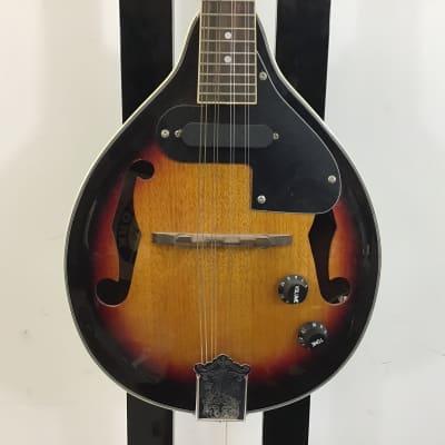 New York Pro NY-M5-VS Mandolin for sale