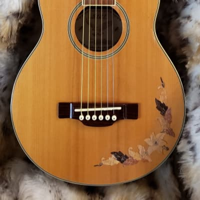 S101 by American Sejung D33440ME2 Acoustic Electric Travel Guitar for sale
