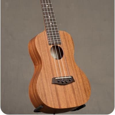 Islander Concert MC-4 for sale