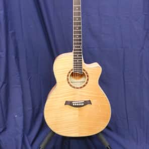Jay Turser HDG-18-CE for sale