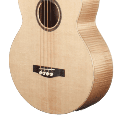 Teton STB130FMCENT Acoustic Electric Bass, Solid Sitka Spruce Top for sale