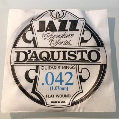 "D'Aquisto RARE Jazz Signature Series String .042"" Flatwound"