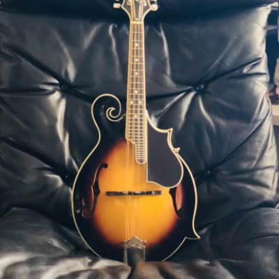 Epiphone MM50 with LR Baggs Pickup for sale