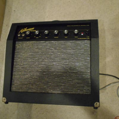 Kalamazoo reverb 12.... 1964-1966  w/orig cover and tubes.... for sale