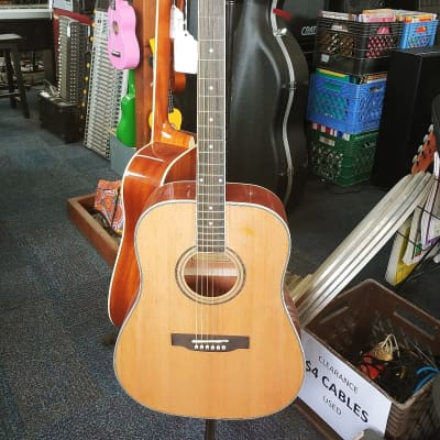 Tanara TSD-100ENT Natural Acoustic Electric Guitar for sale