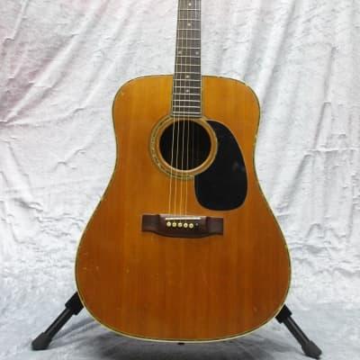 Fernandes Vintage Acoustic  W-300 for sale