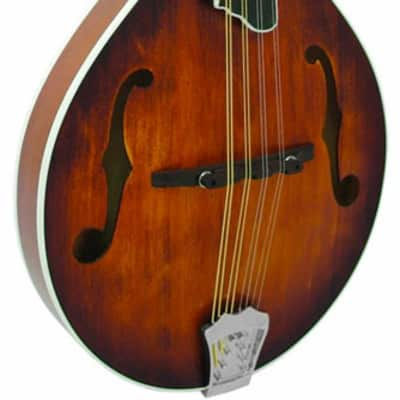 Gold Tone GM-55A A-Style Mandolin for sale