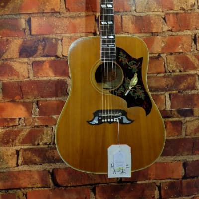 Gibson Dove 1963 for sale