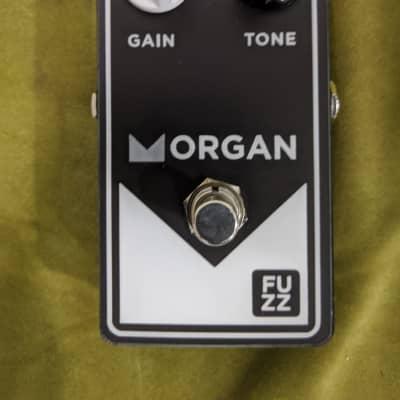 Morgan Amplification Fuzz