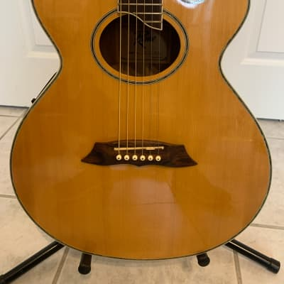 Rogue AE 200 NA Acoustic Electric Guitar for sale