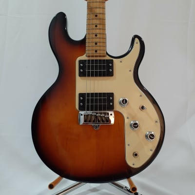 Peavey T-25 for sale