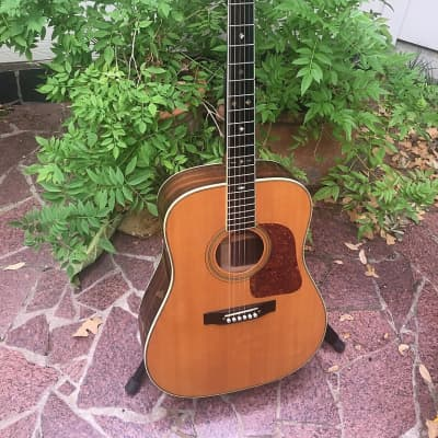 Gallagher G-71 Special  1970's Natural for sale