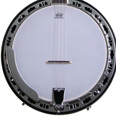 Washburn Americana B11 5-string Resonator Banjo for sale