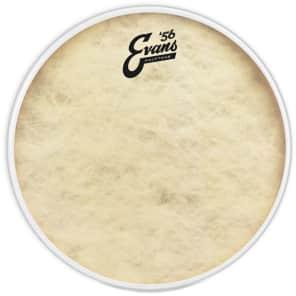 """Evans TT16C7 16"""" Calftone Drum Head"""