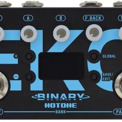 Hotone Binary Eko Pedal TPBGDL1 for sale