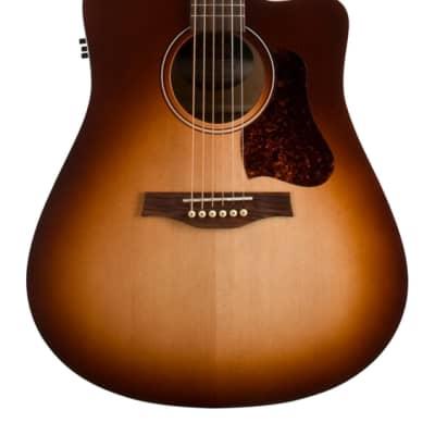 Seagull Entourage CW QIT Acoustic/Electric Guitar Autumn Burst for sale