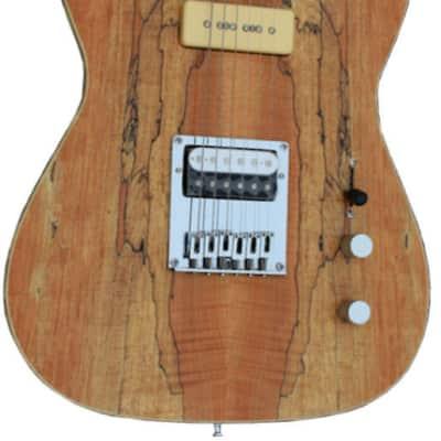 Fishbone FSBTELE-SPM 6 string guitar solid body telecaster style Soap Bar pickup for sale