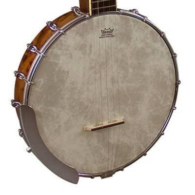 Barnes and Mullins Banjo 5 String Open Back 'Albert' BJ350G for sale
