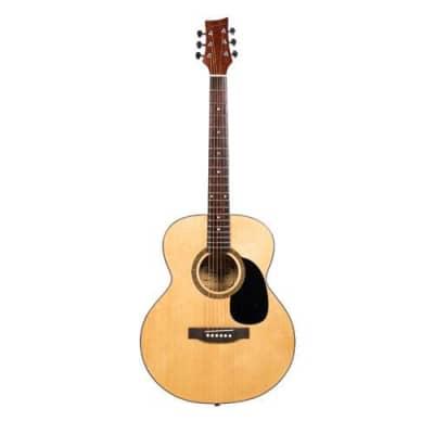 Beaver Creek 101 Series Folk Acoustic Guitar w/Bag BCTF101 for sale