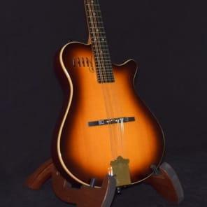 c689b51abef Godin A8 Electric Mandolin w/ Gig bag!