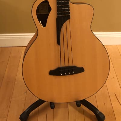 Furch  B62SW Sitka Spruce/Walnut for sale