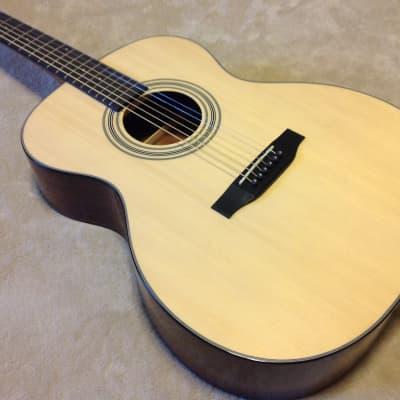 Bristol BM-16 000 Acoustic Guitar Bundle for sale