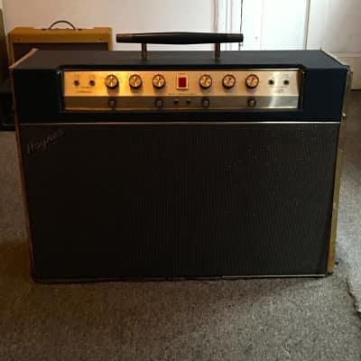 Haynes Jazz King II combo amp for sale
