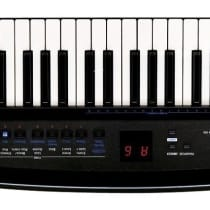 Roland Ax Synth Black Sparkle Keytar 2009 Black image
