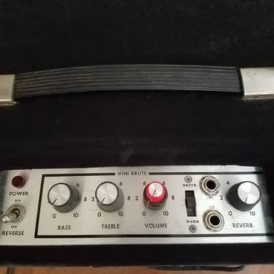 POLYTONE MINI-BRUTE IV for sale