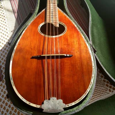 Antique Wurlitzer Mandolin 1930's Natural Dark Wood for sale