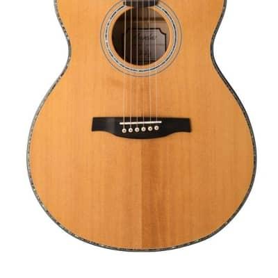 PRS SE  A50E Acoustic/Electric Guitar w/ Case for sale