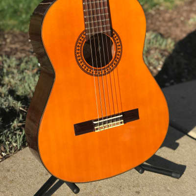 Vintage Aspen LC-6 Gloss / Natural Brown Classical Nylon Strings Guitar with Case for sale