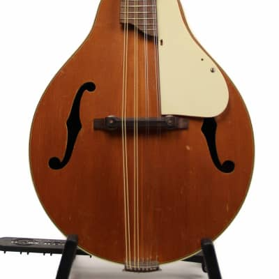 Kay Mandolin 1960