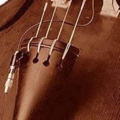 Schertler STAT-B Double Bass SET