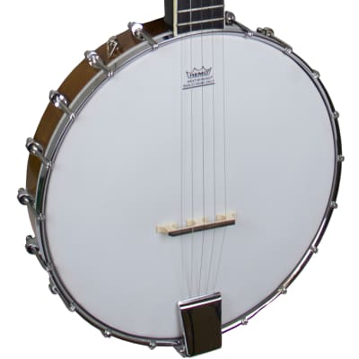 Freshman 5-String Open Back Banjo for sale
