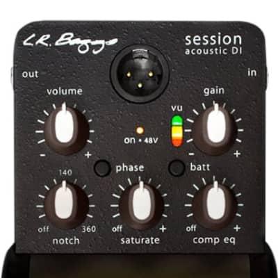 L.R. Baggs Session DI