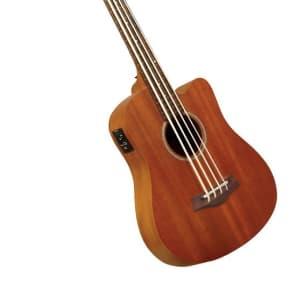 Gold Tone M-Bass Micro Bass 25