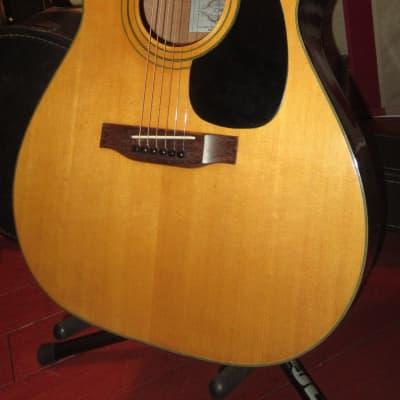 Vintage Original Circa 1971 CONN F-100 Acoustic Guitar for sale
