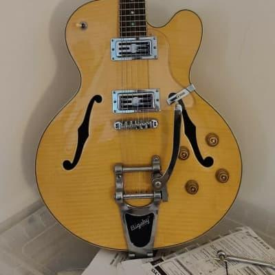 Alden Dorchester semi hollow electric guitar with bigsby b70 vibrato tremolo for sale
